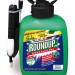 Giersch bekämpfen mit Roundup Speed